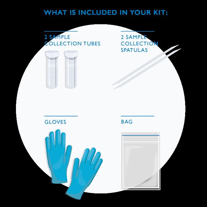 Comprehensive Stool Analysis Kit
